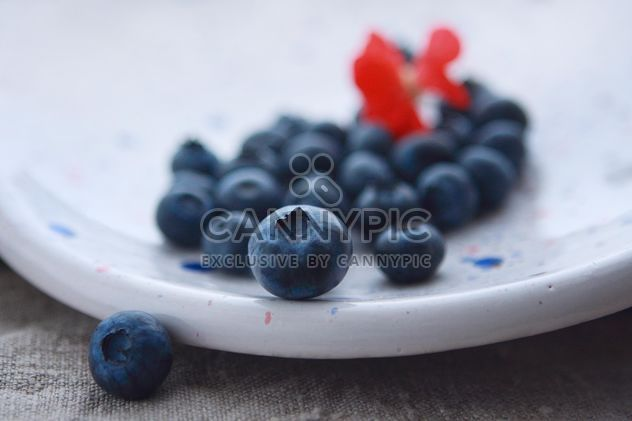 Blueberry on a plate - Free image #359193