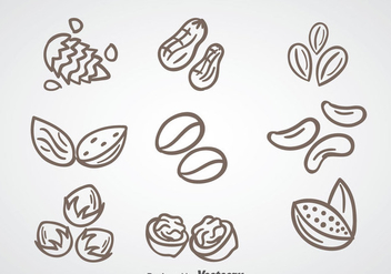 Nuts Collection Vector - Kostenloses vector #361203