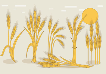 Wheat Stalk Vector - Free vector #363593
