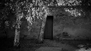 door - бесплатный image #363973