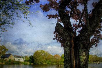 Paysage de Mayenne - Free image #365493