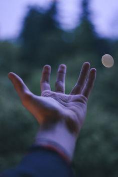 Night falls, take my hand. - Kostenloses image #368073