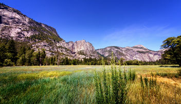 Yosemite National Park - image gratuit(e) #369243