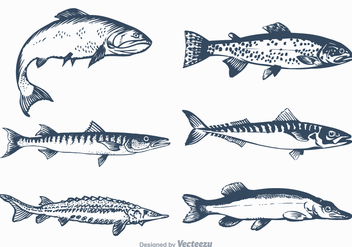 Free Vector Freshwater Fish Set - бесплатный vector #372473
