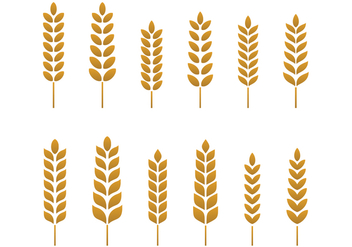 Free Wheat Vector - vector gratuit #372633