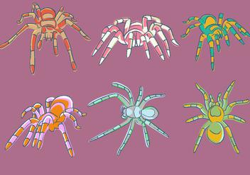 Sketchy Tarantula Vector - Free vector #373373