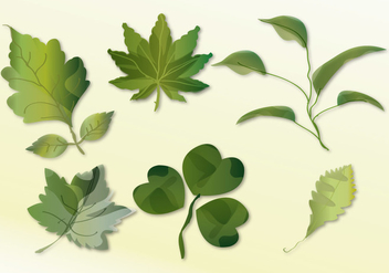 Leaves Set - vector gratuit #373393