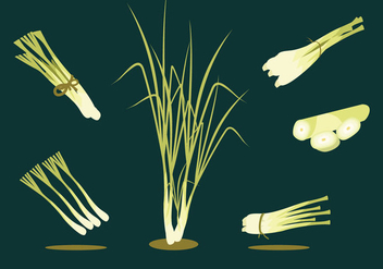Lemongrass Herbs Vector - бесплатный vector #378163