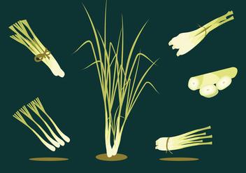 Lemongrass Herbs Vector - Free vector #378163