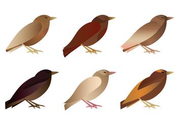 Vector Bird Collection - Kostenloses vector #378803