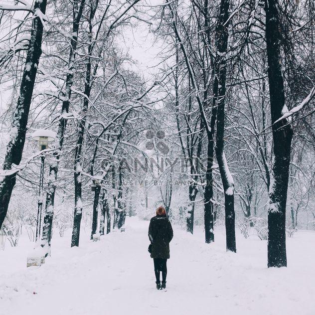 invierno -  image #379973 gratis