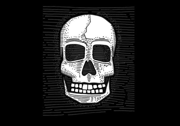 Vector Hand Drawn Skull - vector gratuit #380833