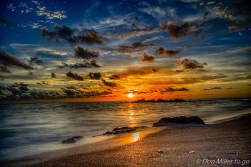 Florida Dreamin' - Free image #382403