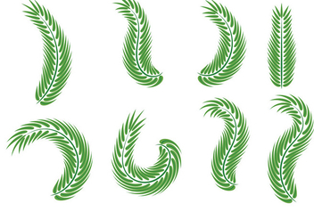 Palm Sunday Leaf Vectors - Free vector #383833