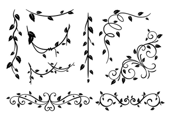 Liana Black and White Vector - vector #385543 gratis