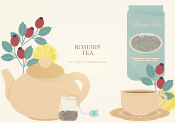 Rosehip Tea Vector Illustration - Free vector #387403