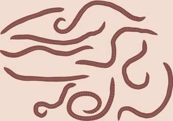 Earth Worm Set Vector - Kostenloses vector #387693