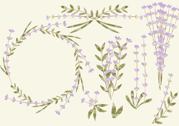 Vector Watercolor Lavender - бесплатный vector #391433