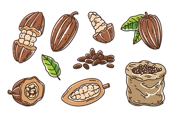 Cocoa Beans Vector - Free vector #393023