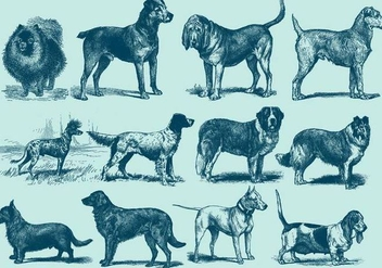 Vintage Blue Dog Illustration - Free vector #395543