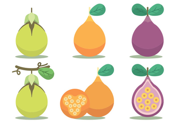 Passion Fruit Vector Set - Free vector #397433