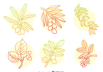 Hand Drawn Herbal Plant Vector Set - Free vector #401283