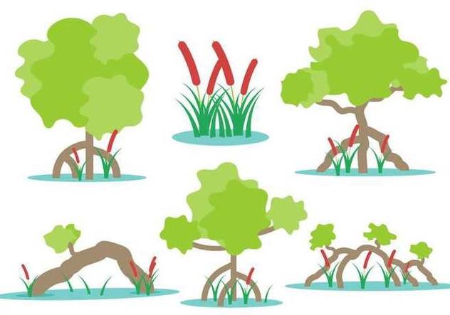 Free Swamp Vectors - vector gratuit(e) #401343