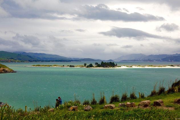 Storm Afoot, Dunedin Harbour Albatross Colony - Free image #403523
