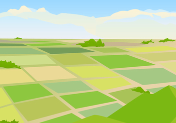 Vector Illustration of Rice field Landscape - vector gratuit(e) #405463