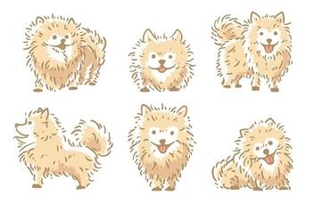 Pomeranian Vector - vector #406973 gratis