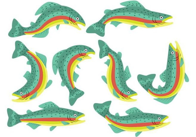 Rainbow Trout Icons - Free vector #407953