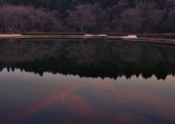 Three colors of dusk - Kostenloses image #408013