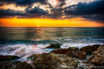 My Florida - Free image #410873
