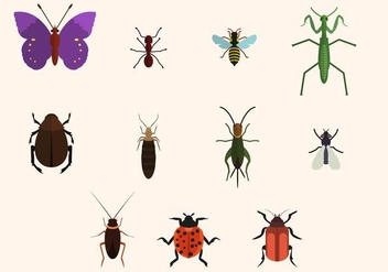 Free Insect Vector - Kostenloses vector #411023