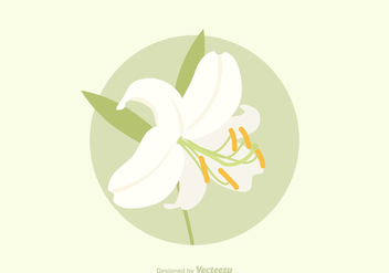Free Easter Lily Vector - Kostenloses vector #411653