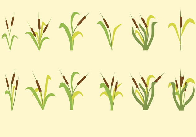 Cattails Vector Icon - Free vector #413003