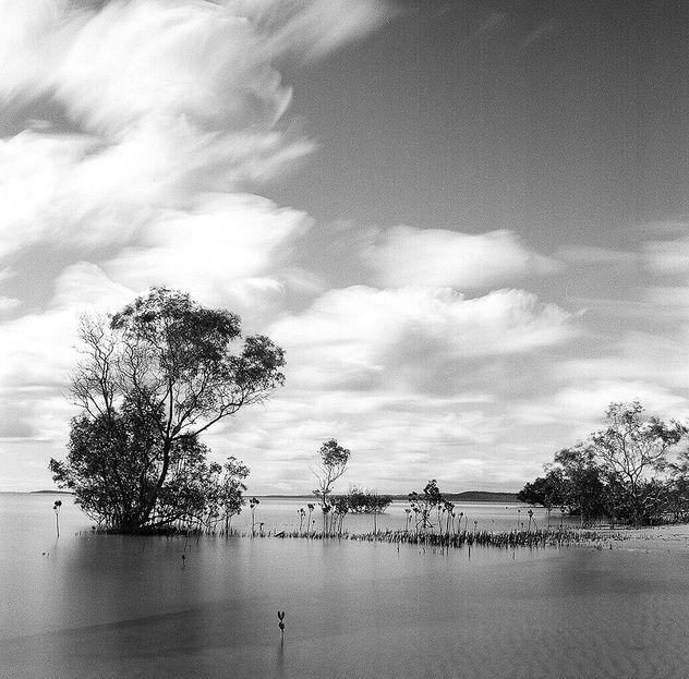 Fraser Island - Ilford HP5+ 120 film - Free image #413393