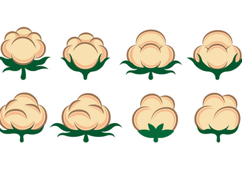 Vector Of Cotton Flowers - Kostenloses vector #413823
