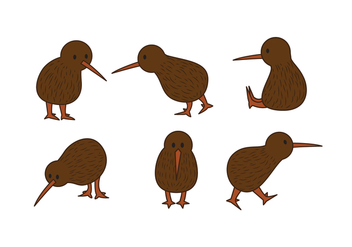 Kiwi Bird Vector Set - Free vector #414873