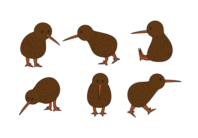 Kiwi Bird Vector Set - vector #414873 gratis
