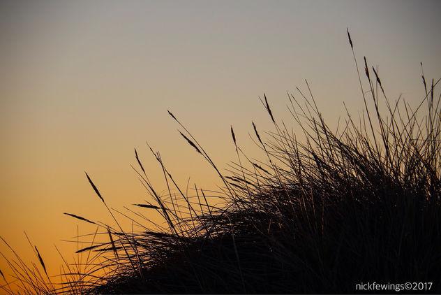 Sunrise Spectrum - Kostenloses image #415253