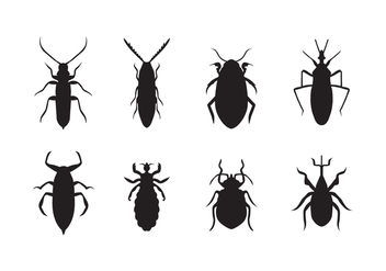 Free Bed Bug Vector - vector gratuit #415323