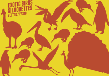 Exotic Birds Silhouettes - Free vector #418393