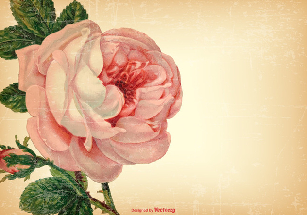Vintage Shabby Floral Background - Free vector #421843