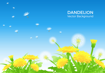 Dandelion Vector Background - Free vector #422183
