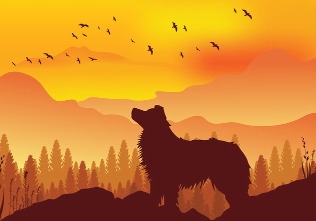 Border Collie Silhouette Free Vector - Free vector #422663