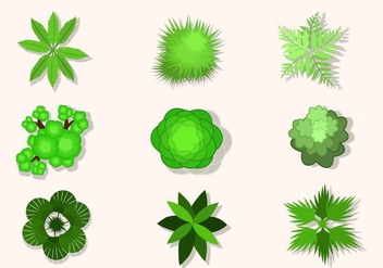 Flat Top View of tree vectors - vector gratuit #424393