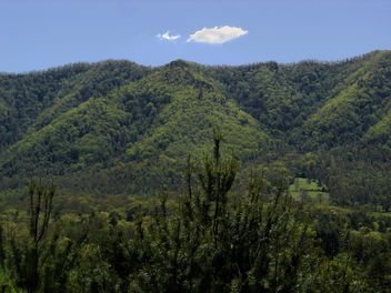 Rich Mountain and a cloud day - image gratuit #427943