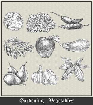 vintage banner with vegetables and fruits - vector gratuit #135073