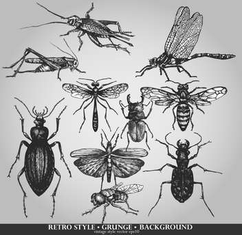 vector set of insects on grunge background - vector gratuit #135123